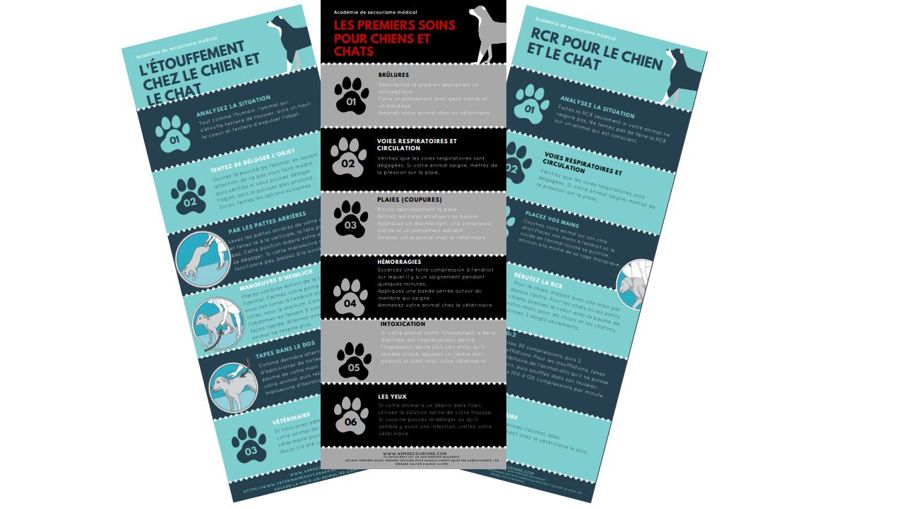 RCR étouffement chien chat
